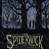The Spiderwick Chronicles (Tony DiTerlizzi and Holly Black)