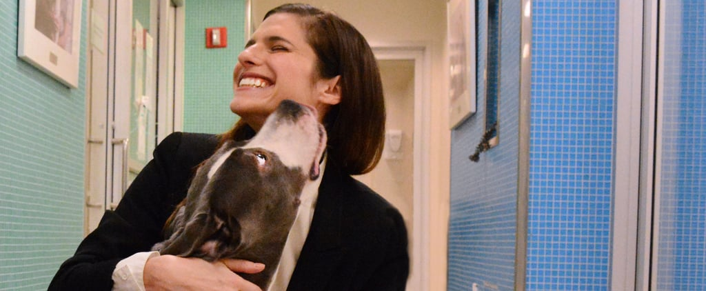 Lake Bell on Introducing Her Baby to Her Dogs | Interview