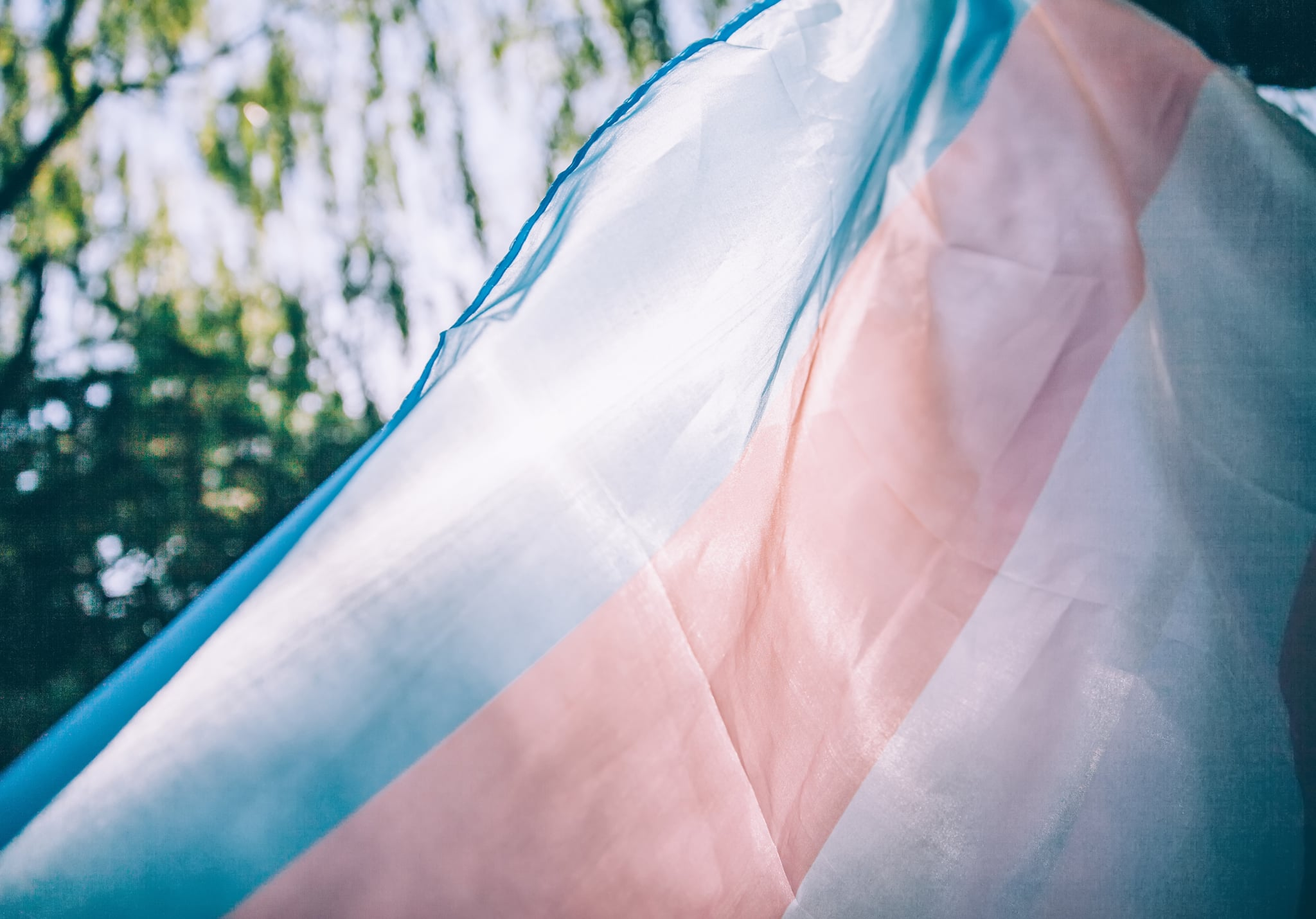 closeup of a transgender pride flag waving on the blue sky, moved by the wind