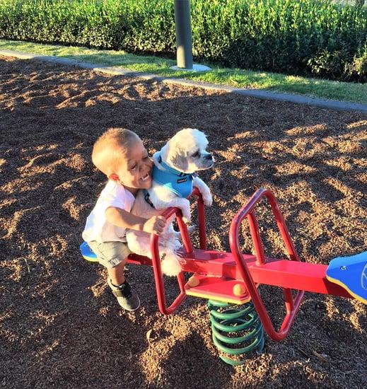Boy Adopts Dog With Dwarfism