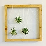 Wood Frame Plant Holder