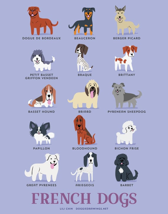 French dogs