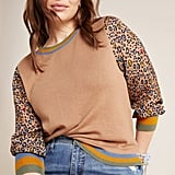 Celina Knit Pullover