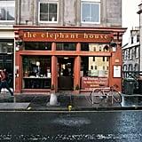 See the Elephant House Cafe