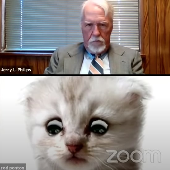 Lawyer Joins Zoom Call With Cat Filter | Video