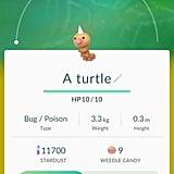 "Weedle aka ""A turtle"""