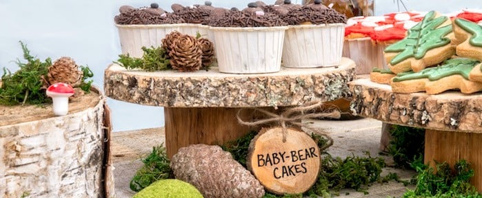 If Your Child Loves the Outdoors, Throw Them a Rustic Wilderness Birthday Party