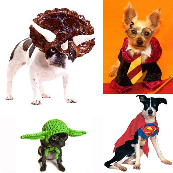 Geeky Costumes For Your Dog