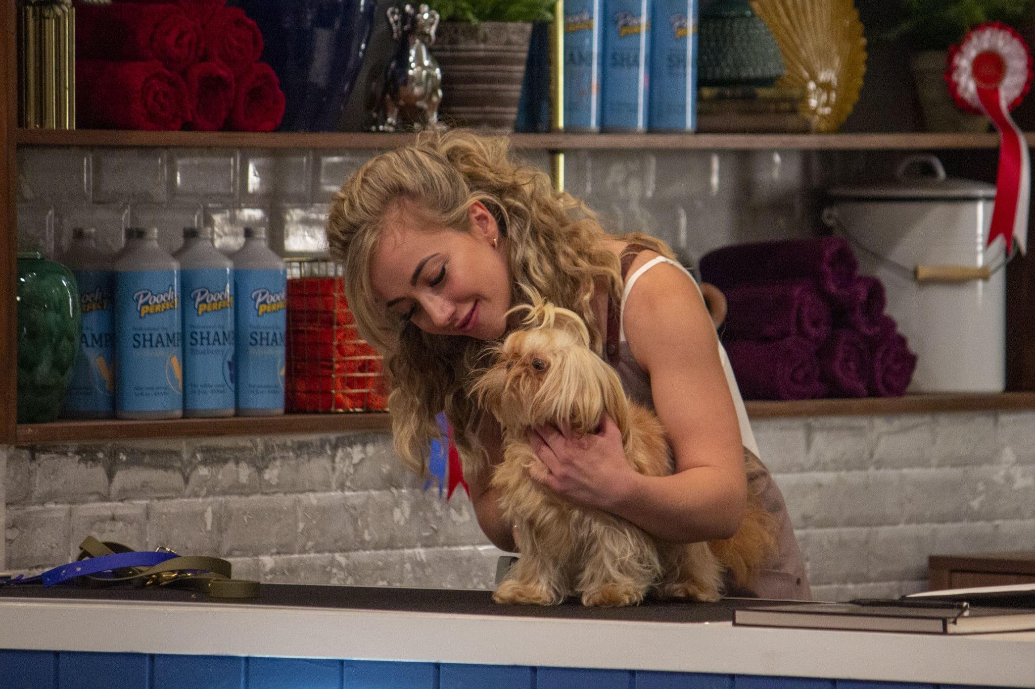 WARNING: Embargoed for publication until 00:00:01 on 24/12/2020 - Programme Name: Pooch Perfect - TX: n/a - Episode: Pooch Perfect Ep1 (No. 1) - Picture Shows:  Kara - (C) Beyond Productions - Photographer: Becky Robinson