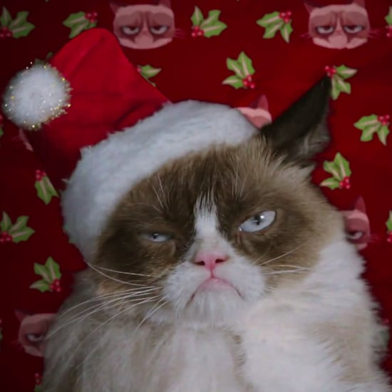 Grumpy Cat's Worst Christmas Ever Movie Trailer