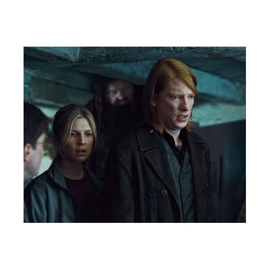 Fleur Delacour and Bill Weasley — Harry Potter and The Deathly Hallows