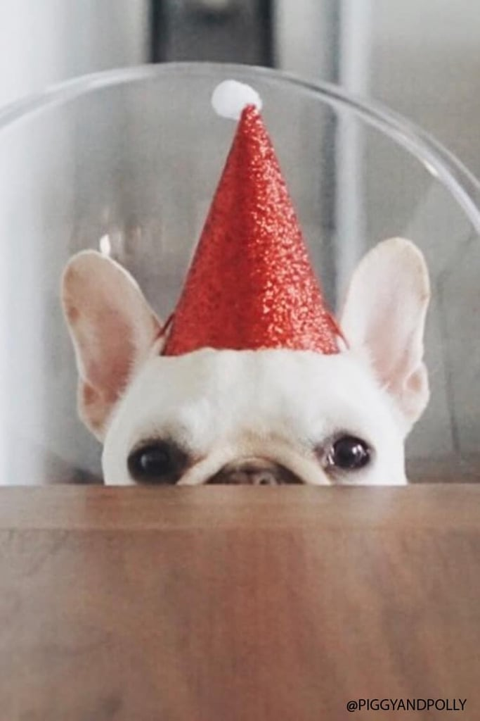 Mini Holiday Hat Set