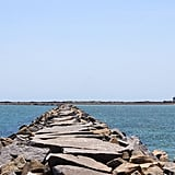 For a unique outdoor experience, consider hiking the Provincetown Causeway, a mile-long stone jetty used to protect the salt marshes from ocean currents. Made of large granite rocks stretching out into the edge of the harbor, this hike is one of the best ways to spend some time exploring the furthest points of Cape Cod. No matter the time of day, you will be greeted with an abundance of wildlife and natural beauty. Walk slowly, breathe in deeply, and take as long as you need to soak up the peace and quiet.