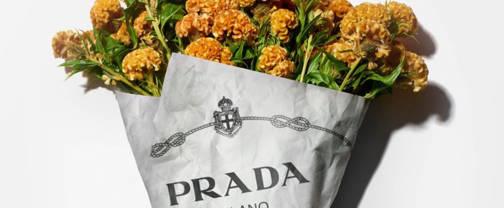 Prada Exhibition at London Design Museum 2020