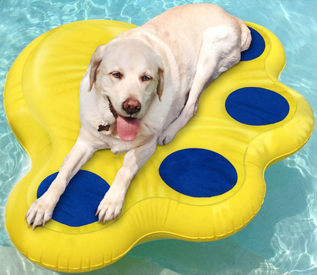 Best Pool Floats For Dogs