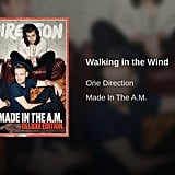 """Walking in the Wind"" by One Direction"