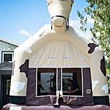 Pony Jumpy House