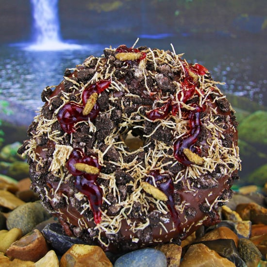 Doughnut Time Bushtucker Cricket Doughnut