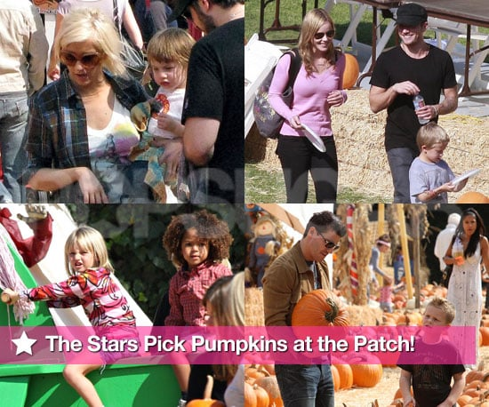 The Stars Pick Pumpkins at the Patch!