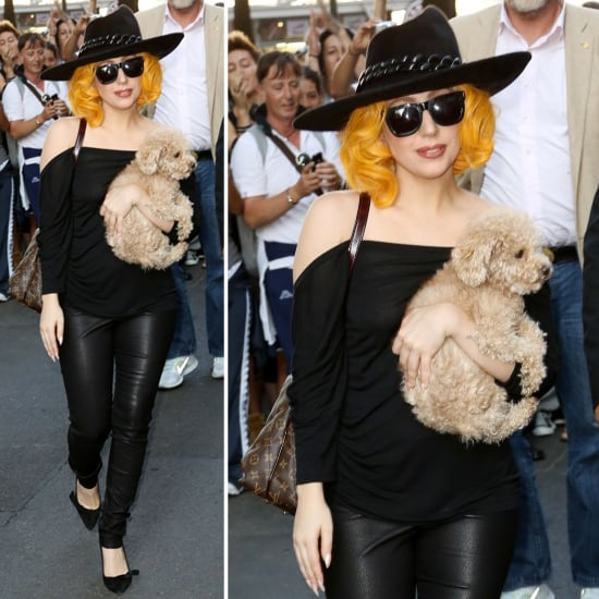 gaga leather pants Lady
