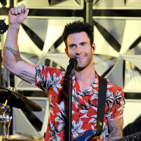 Fan Attacks Adam Levine at Maroon 5 Concert | Video