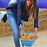 Alessandra Ambrosio pushed a tiny cart of pumpkins.