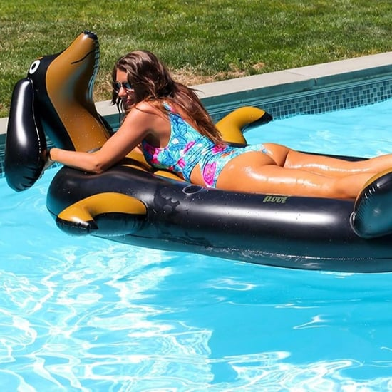 Wiener Dog Pool Float