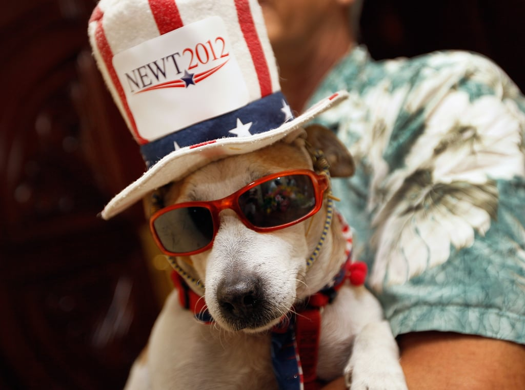 This pooch is crazy for Newt!