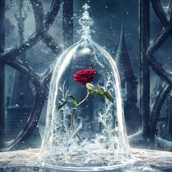 Beauty and the Beast Live-Action Movie Details