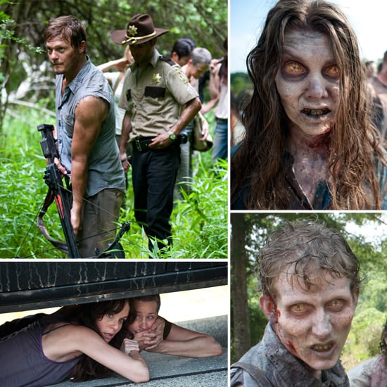 Check Out the Zombie-Tastic Pics From Walking Dead Season Two