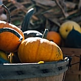 Decorate With Pumpkins