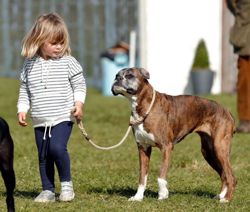 Mia Tindall With Zara Phillips's Boxer, Spey