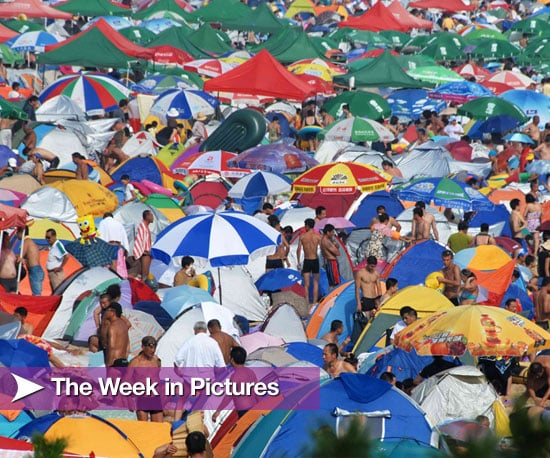 Pictures From the Week of August 16