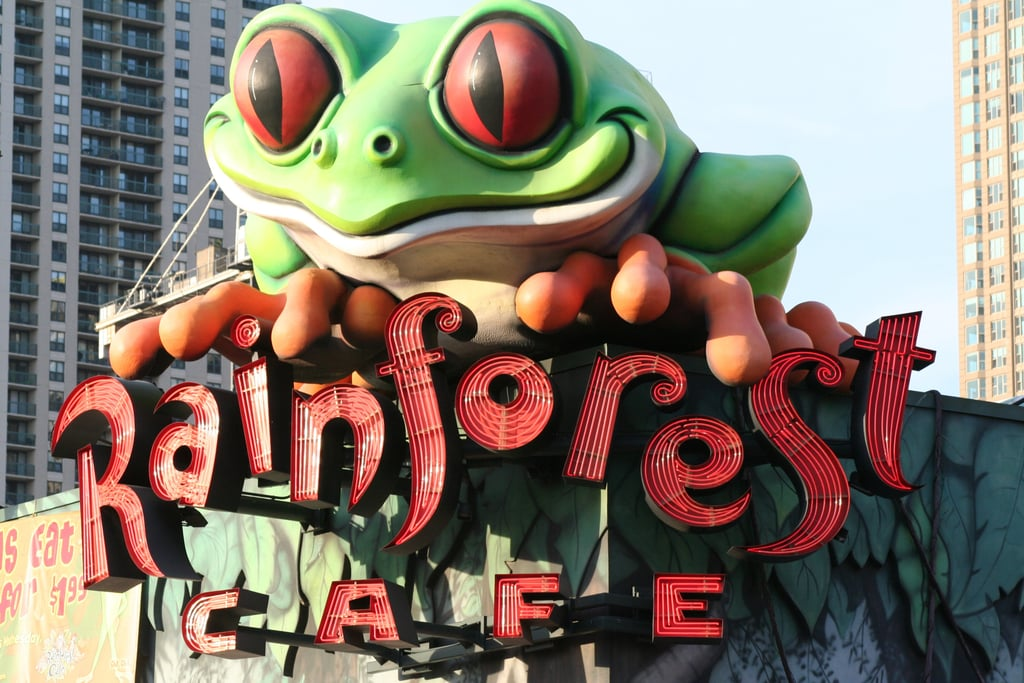 Best Things About Rainforest Cafe