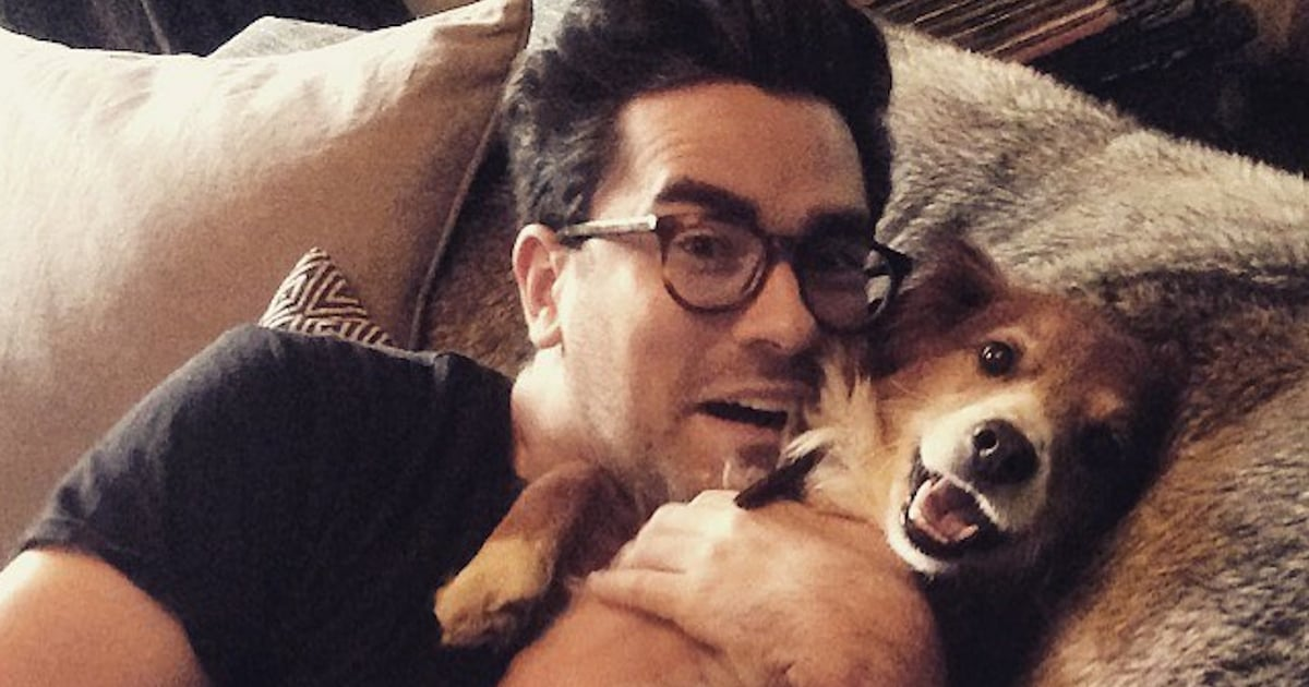 Name a Cuter Duo Than Dan Levy and His Rescue Dog, Redmond — We'll Wait