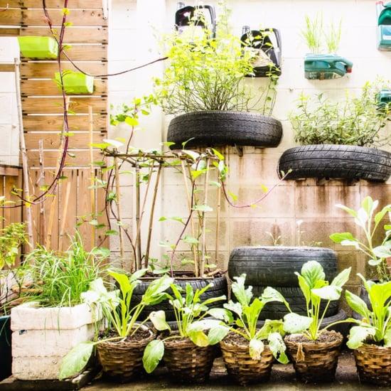 Urban Garden Inspiration