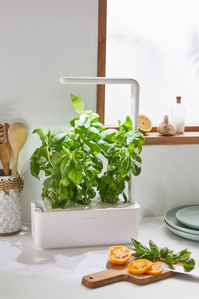 Click & Grow Smart Herb Garden 3 Starter Kit