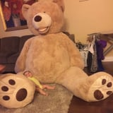 This Grandpa Gave His Granddaughter a Ridiculously Huge Teddy Bear and the Internet Cannot Handle It