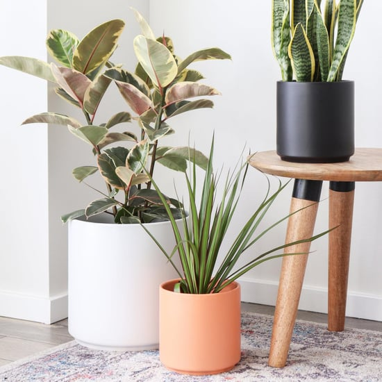 Best Home Decor From Etsy  POPSUGAR Home