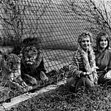 Melanie Griffith and Her Lion
