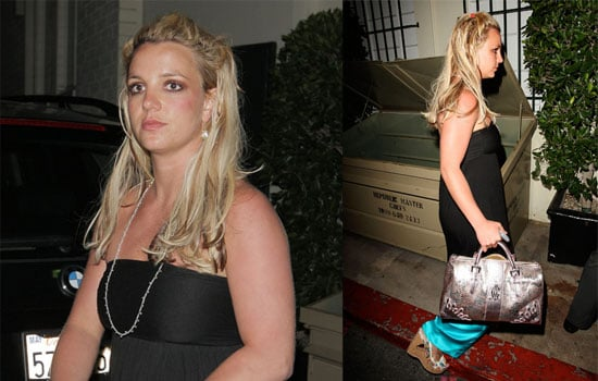 Jamie Spears Gets Paid to Be Britney's Co-Conservator