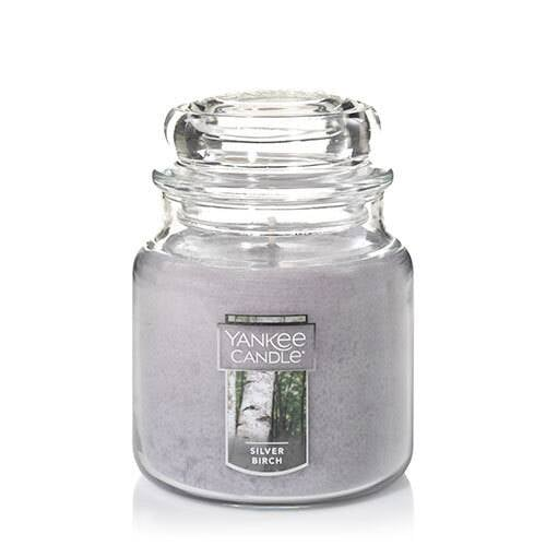 Silver Birch Medium Classic Jar Candle
