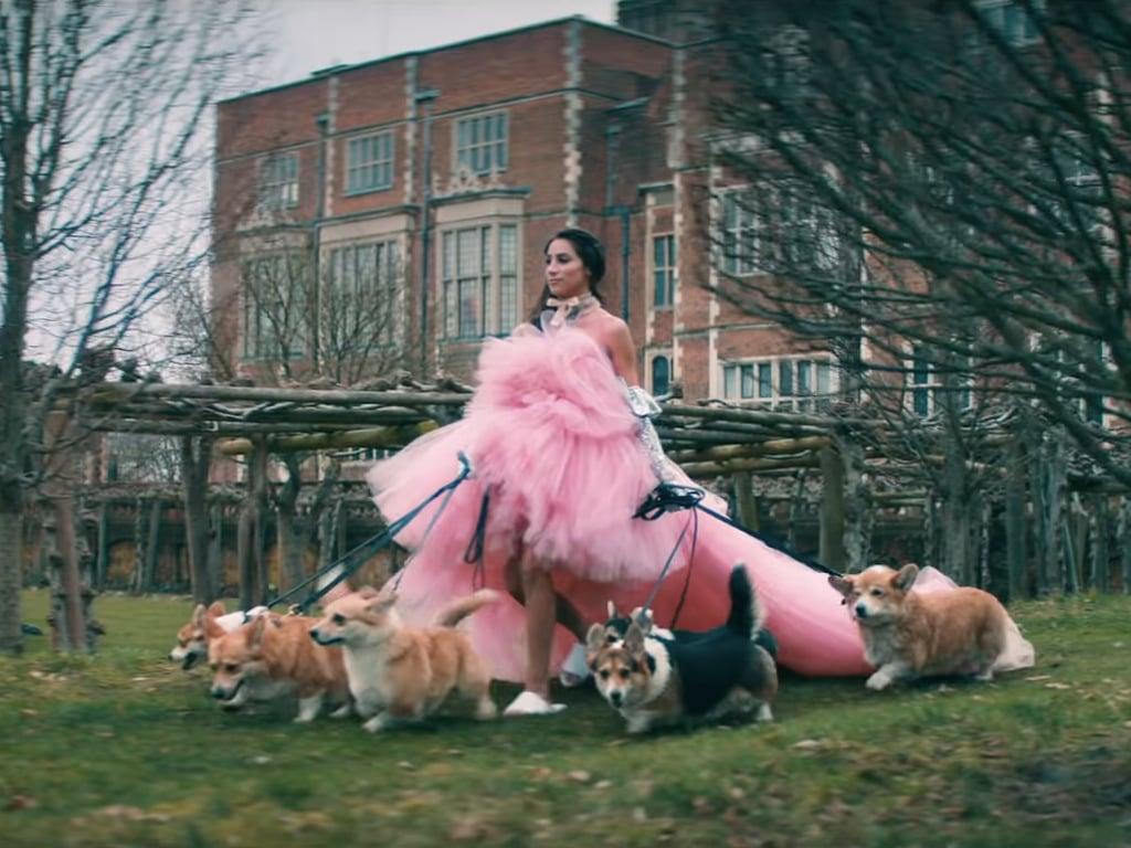 Dog-Walking Danielle