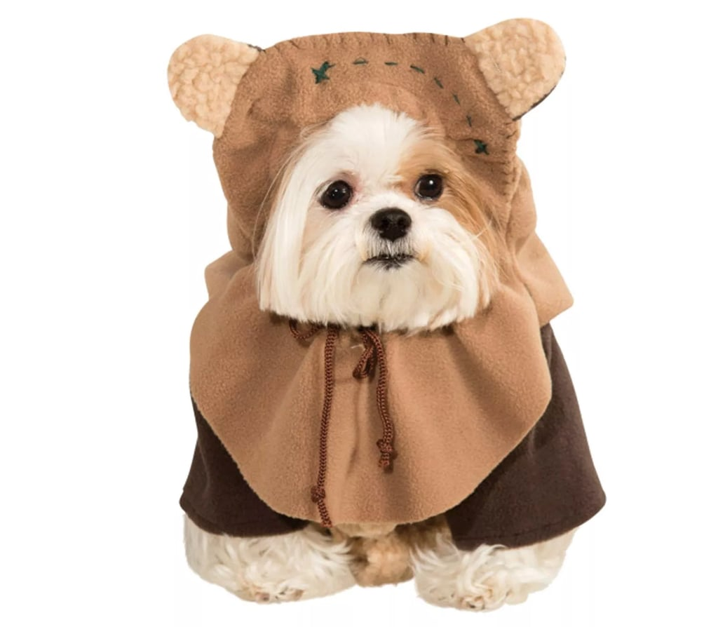 No Time to Sit or Stay! These Pet Halloween Costumes From Target Are Just What You Need