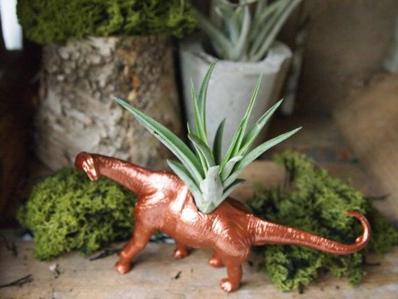 Small Copper Diplodocus Dinosaur Air Plant