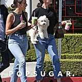 Selena Gomez Carrying Her Dog Winnie at Cha Cha Matcha in West Hollywood