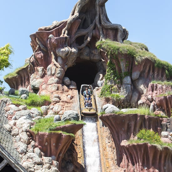 7 Fun Facts About Disney's Splash Mountain