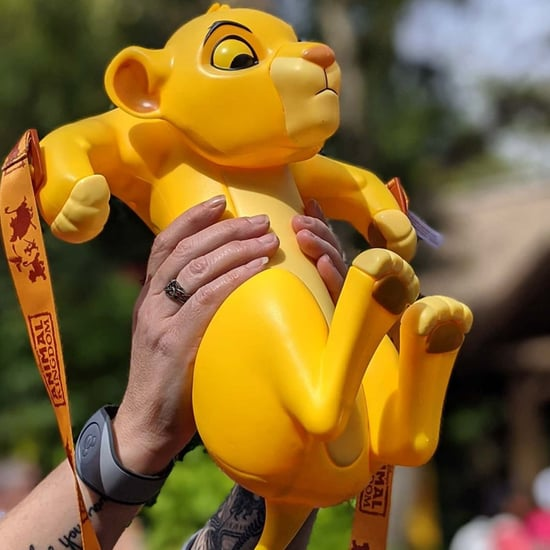 Disney World Is Selling a Simba Popcorn Bucket