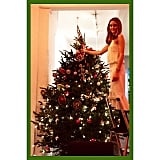 Extralarge Christmas Trees Are Worth Climbing For