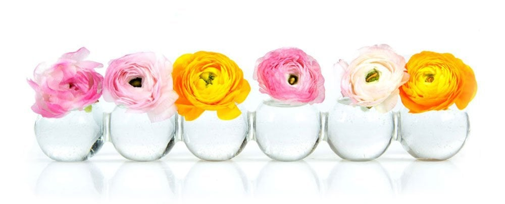 Caterpillar Bud Vase 20 Hostess Gifts You Can Buy On Amazon